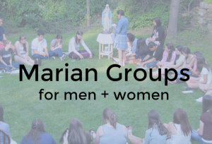 marian-group